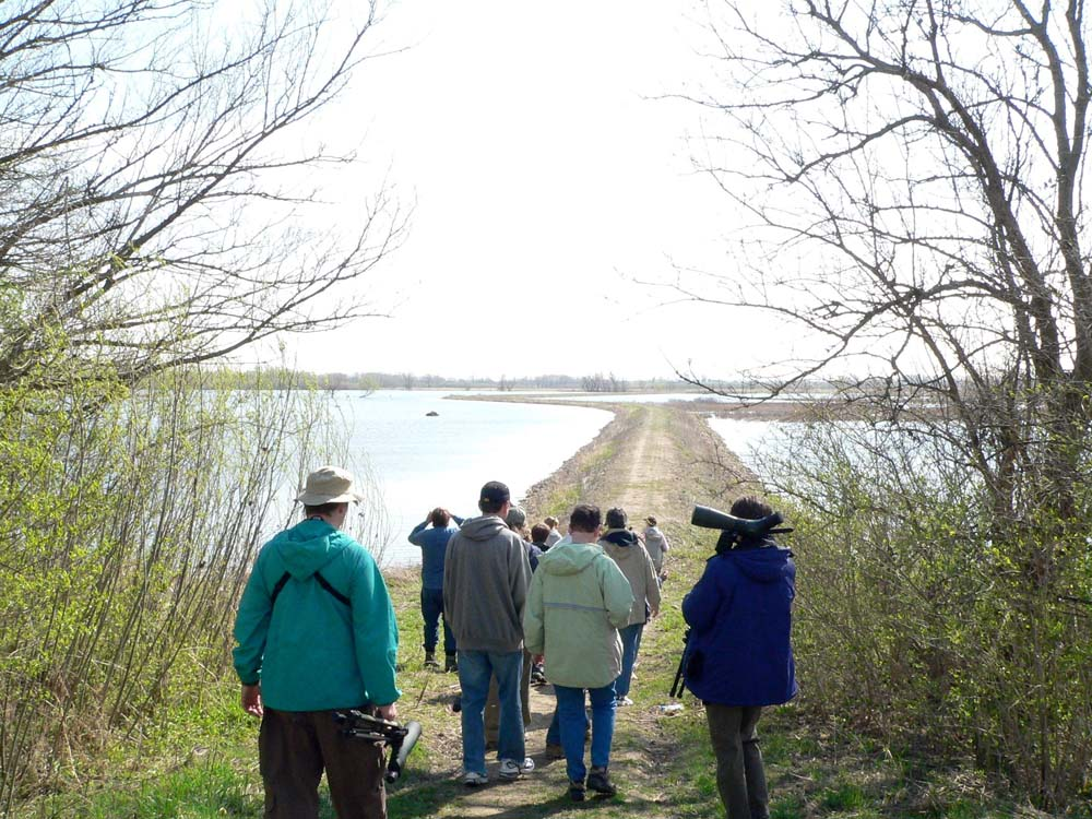 Iowa City Bird Club visits Cone Marsh